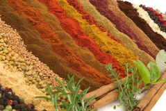 Épices et herbes photo stock