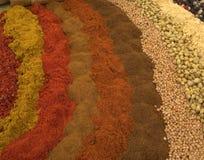 Épices et herbes image stock