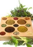 Épices et herbes photographie stock libre de droits