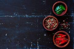 Épices et herbes Images libres de droits