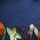 Épices et herbes Photo libre de droits