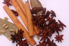 Épices et herbes au-dessus du fond blanc Photo stock