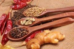 Épices et herbes dans des cuillères en bois Ingrédients de nourriture et de cuisine Photo libre de droits