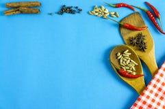Épices et herbes indiennes sur le fond bleu avec l'espace de vue supérieure et de copie pour des nourritures de conception Photographie stock libre de droits