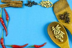 Épices et herbes indiennes sur le fond bleu avec l'espace de vue supérieure et de copie pour des nourritures de conception Image libre de droits