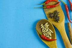 Épices et herbes indiennes sur le fond bleu avec l'espace de vue supérieure et de copie pour des nourritures de conception Images libres de droits