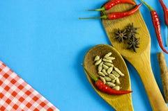 Épices et herbes indiennes sur le fond bleu avec l'espace de vue supérieure et de copie pour des nourritures de conception Photo stock