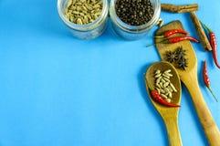Épices et herbes indiennes sur le fond bleu avec l'espace de vue supérieure et de copie pour des nourritures de conception Photo libre de droits