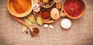 Épices et ingrédients Photographie stock libre de droits
