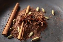 Épices et poudre de cacao aromatiques photographie stock libre de droits