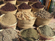 Épices et thé Image stock
