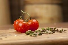 Épices et tomates Image libre de droits