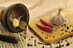 Épices et un mortier sur la cuisine Photos stock