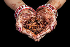 Épices indiennes d'anis d'étoile Photographie stock