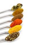 Épices indiennes dans des cuillères à café Image libre de droits