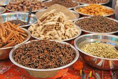 Épices indiennes L'Inde d'épices sont vendues sur le marché Badyan, cannelle, gingembre photos libres de droits
