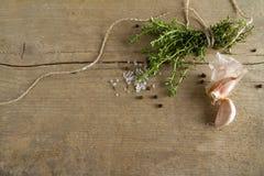 Épices (l'ail, le thym, voient le sel, les grains de poivre noirs)  Image stock
