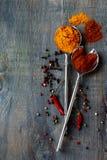 Épices lumineuses Photo stock