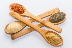 Épices pour la cuisson Photo stock