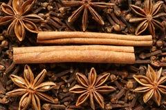 Épices pour le vin chaud. Image stock