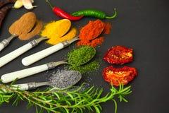 Épices sur des cuillères Photo stock