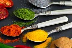 Épices sur des cuillères Image stock