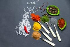Épices sur des cuillères Images stock