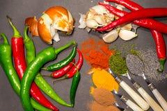 Épices sur des cuillères Image libre de droits