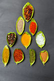 Épices sur des cuillères Photographie stock