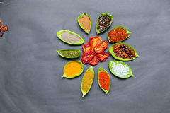 Épices sur des cuillères Photos libres de droits