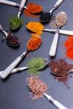 Épices sur des cuillères Photos stock