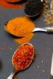 Épices sur des cuillères Photographie stock libre de droits
