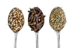 Épices sur les cuillères argentées Photo stock