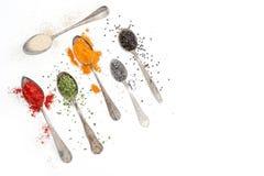 Épices sur les cuillères d'argenterie et le fond blanc Photos stock