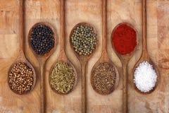 Épices sur les cuillères en bois Photos stock