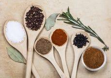 Épices sur les cuillères en bois Photo stock