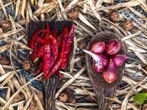 Épices thaïlandaises sur la cuillère en bois photos stock