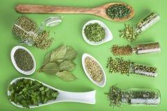 Épices vertes sur un fond vert Images stock