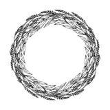 Épillets de blé de guirlande et feuille de Green Bay, texte écrit de main Guirlande ronde de malt avec l'espace pour le calibre d Images stock