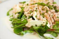 Épinards de betteraves et crevettes roses, salade saine Photographie stock
