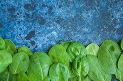 Épinards frais de bébé sur un backround bleu Photographie stock libre de droits
