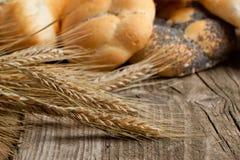 Épis de blé secs Photographie stock