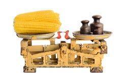 Épis de blé sur de vieilles échelles Image libre de droits
