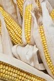 Épis de blé sur un fond blanc Image stock