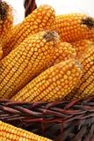 Épis de maïs images stock