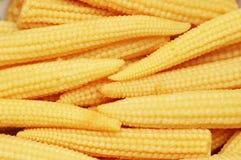 Épis de maïs de chéri disposés comme fond photographie stock libre de droits