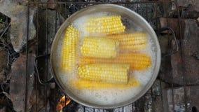 Épis de maïs en eau bouillante Ébullition dans un pot image stock
