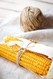 Épis de maïs secs Photographie stock libre de droits