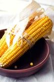 Épis de maïs secs dans une cuvette Photos stock