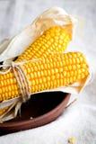 Épis de maïs secs dans une cuvette Images libres de droits